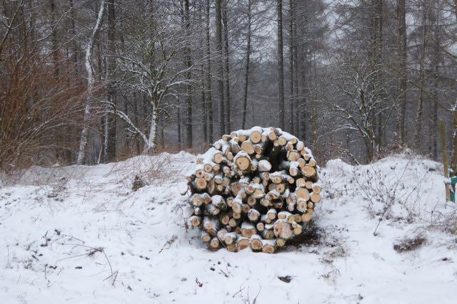 Ischeroth: Auch hier Haubergsflächen der Bühler und Büchergründer Waldgenossenschaften