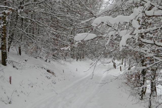 Wanderwege am Ischeroth, auch im Winter ein wunderbares Naturerlebnis
